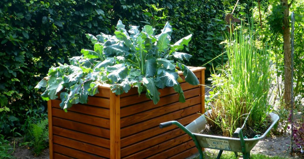 garden watering system in Orlando
